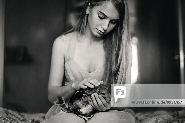 Caucasian girl holding pet chinchilla on bed