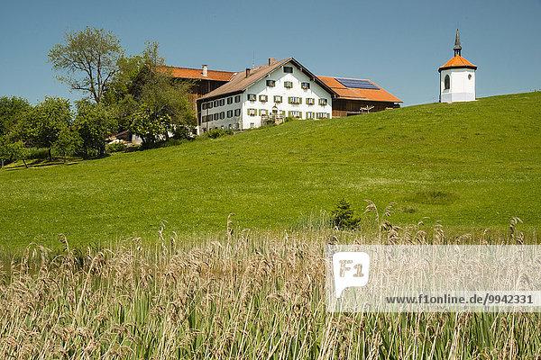 Außenaufnahme Landschaftlich schön landschaftlich reizvoll Europa Vertrauen niemand Architektur Natur Kirche Religion Christentum Alpen Wiese Sehenswürdigkeit Bayern Kapelle Christ Deutschland