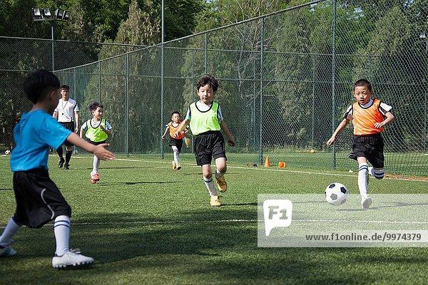 Junge - Person Feld Ar Football spielen