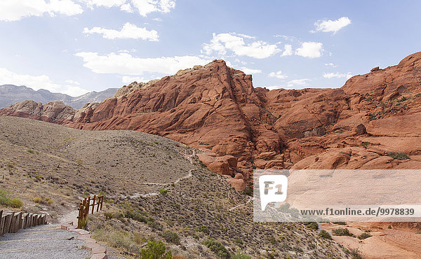 Red Rock Canyon National Park  Nevada  USA  Nordamerika