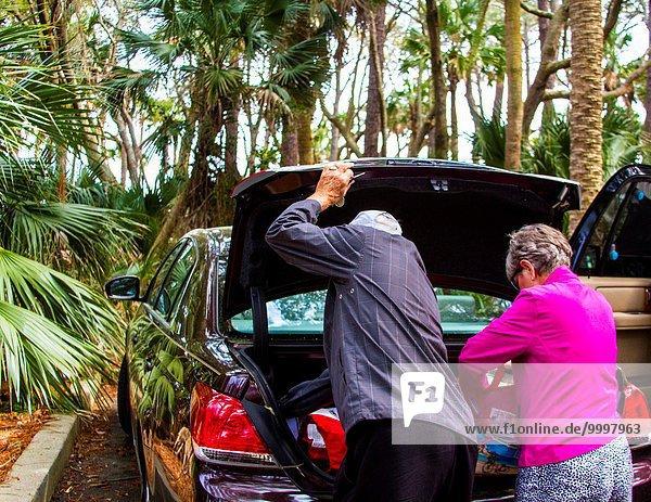 Europäer Prüfung Auto Baum Natur Kofferraum parken Mittelpunkt alt