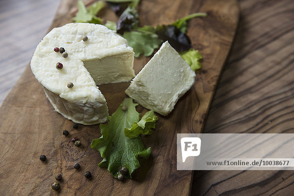 Close-up of cheese and lettuce leaf  Germany