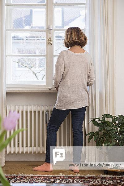 Rear view of senior woman looking through a window  Munich  Bavaria  Germany