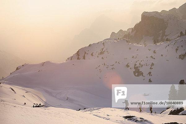 Ski mountaineers climbing on snowy mountain  Tyrol  Austria