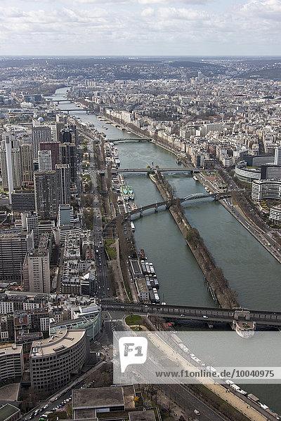 Aerial view of a river passing through a city  Seine River  Paris  France