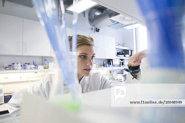 Young female scientist working at biological laboratory