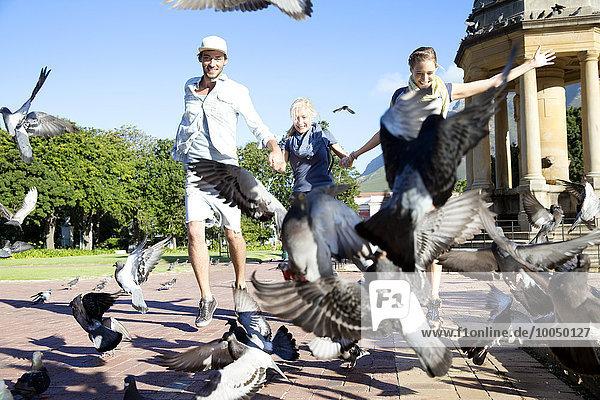 Begeisterte Freunde beim Taubenjagen