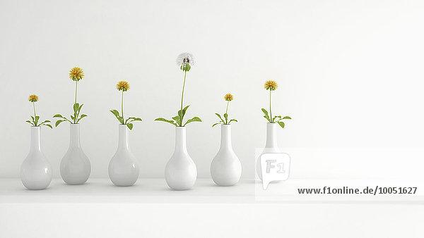 Reihe weißer Blumenvasen mit Pusteblume und Löwenzahn  3D-Rendering Reihe weißer Blumenvasen mit Pusteblume und Löwenzahn, 3D-Rendering