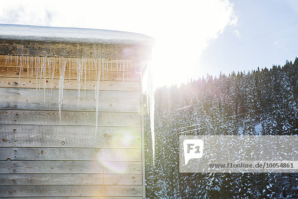 Sunlit icicles on log cabin roof