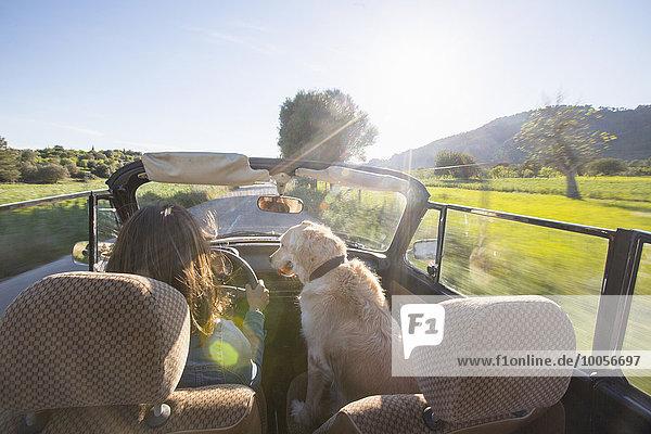 Reife Frau und Hund  im Cabriolet  Rückansicht