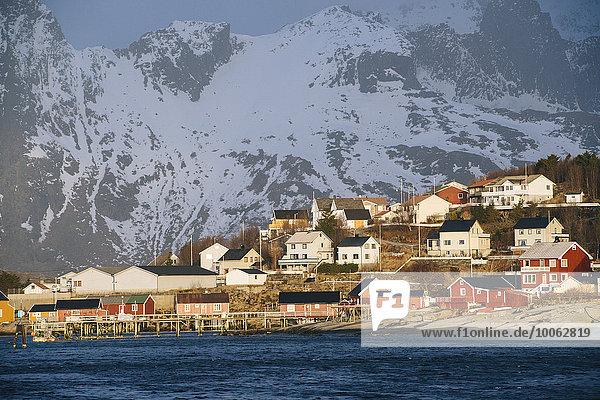 Das Fischerdorf Reine  Lofoten  Norwegen