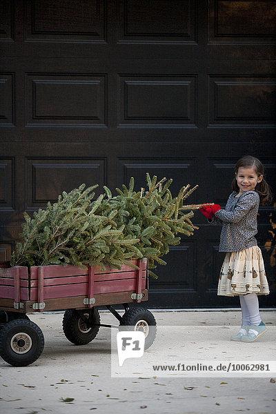 Porträt eines Mädchens  das einen Wagen mit Weihnachtsbaum schiebt