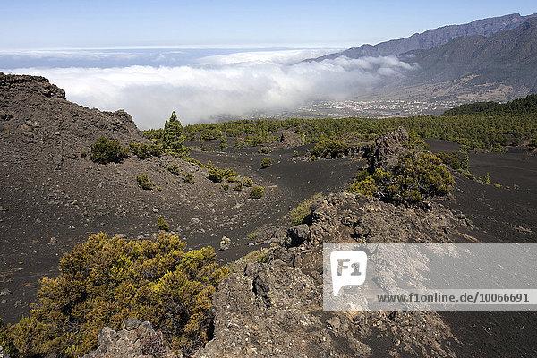 Ausblick vom Parque Natural de Cumbre Vieja auf das Valle Aridane und die Caldera de Taburiente  La Palma  Kanarische Inseln  Spanien  Europa