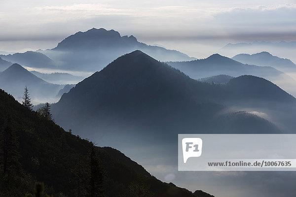 Blaue Stunde mit Bayerischen Alpen  Herzogstand  Oberbayern  Bayern  Deutschland  Europa