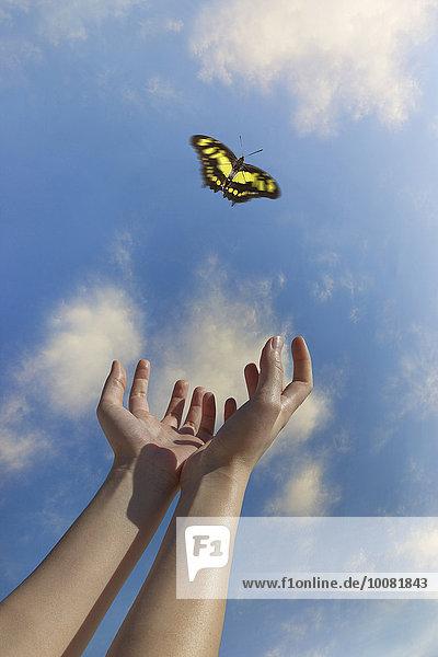 Europäer Frau geben Himmel blau Schmetterling