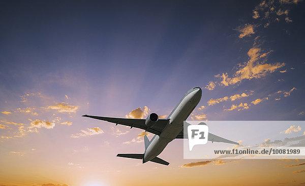 Flugzeug fliegen fliegt fliegend Flug Flüge Sonnenuntergang Himmel dramatisch