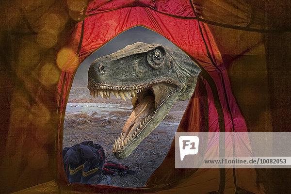 Außenaufnahme Campingplatz Zelt rufen Dinosaurier