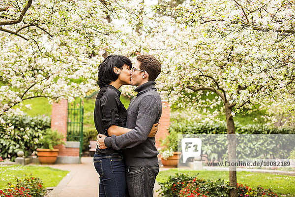 Couple kissing under flowering trees in park