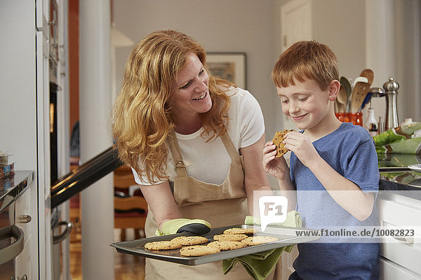 Europäer Sohn Küche backen backend backt Keks Mutter - Mensch