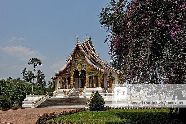 Fotografie Boden Fußboden Fußböden Museum Monarchie Palast Schloß Schlösser bauen Südostasien Buddha Laos Luang Prabang