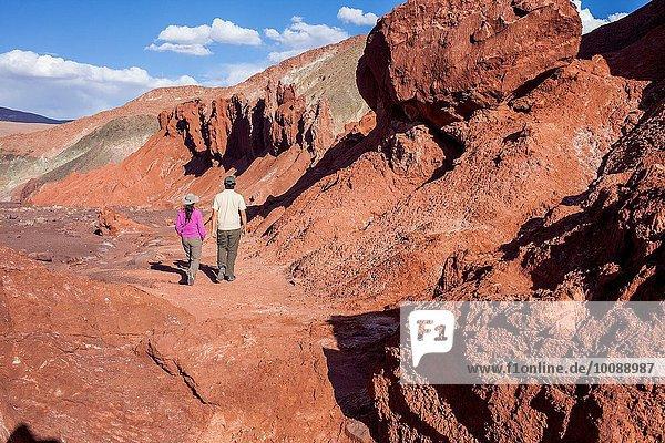 Tal Atacama Chile Regenbogen Valle