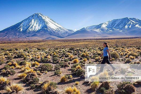 Vulkan Atacama Chile Licancabur