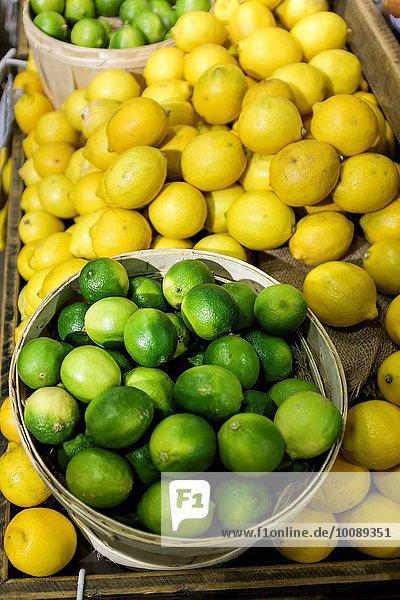Blumenmarkt Limette Zitrone Richmond London Borough of Richmond upon Thames Markt Surrey