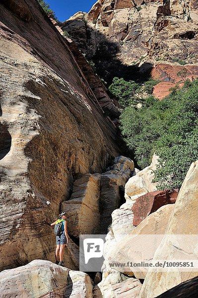 Junge Kletterin auf einem Felsblock stehend  Mount Wilson  Nevada  USA
