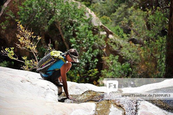 Junge Klettererin  die sich in die Hocke kauert  um Wasser auf dem Felsen zu berühren  Mount Wilson  Nevada  USA