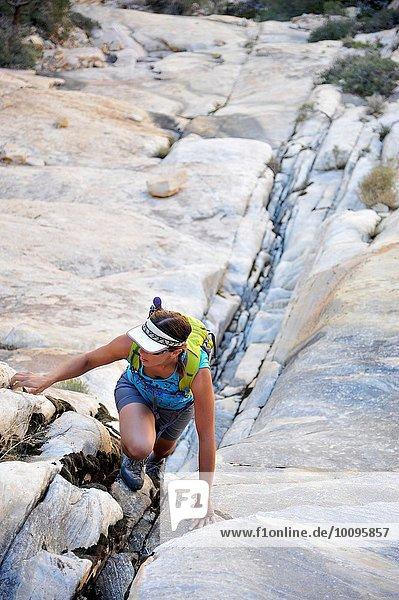 Junge Klettererin beim Klettern in der Felsspalte  Mount Wilson  Nevada  USA