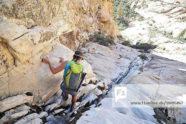 Rückansicht einer jungen Bergsteigerin  die eine Spalte hinunterklettert  Mount Wilson  Nevada  USA
