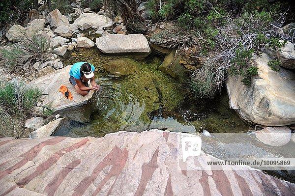 Hochwinkelansicht von Wandererinnen im Felsbecken  Mount Wilson  Nevada  USA