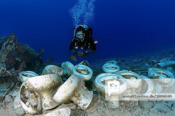 Taucher schaut auf die Sanitäreinrichtung eines Schiffswrack  Ras-Mohammed-Nationalpark  Sharm el Sheikh  Rotes Meer  Ägypten  Afrika