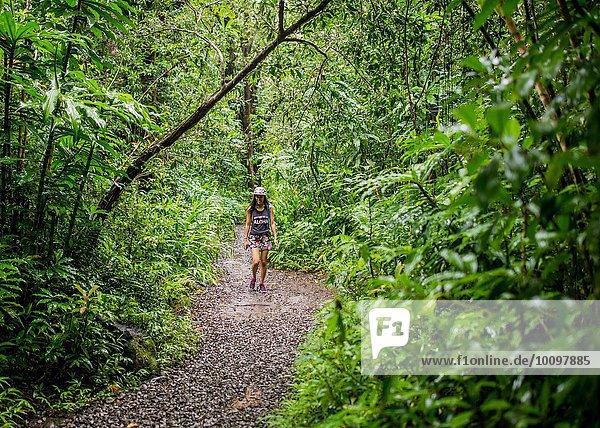 Young female tourist strolling in jungle  Manoa Falls  Oahu  Hawaii  USA
