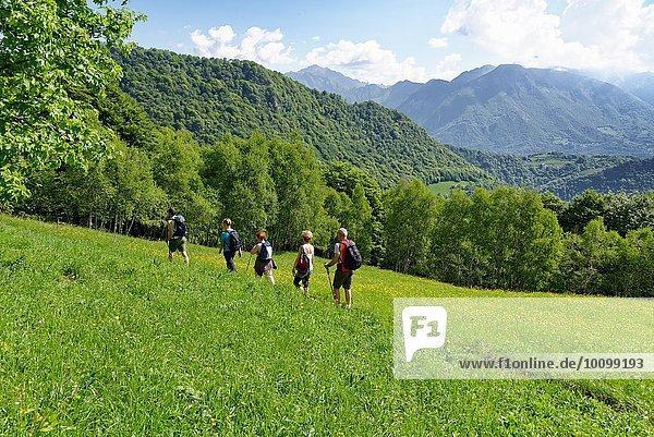 Fünf reife Wanderer  die entlang des Bergweges wandern  Grigna  Lecco  Lombardei  Italien