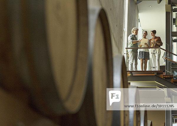 Weinkellerei-Mitarbeiter im Gespräch auf der Plattform im Keller