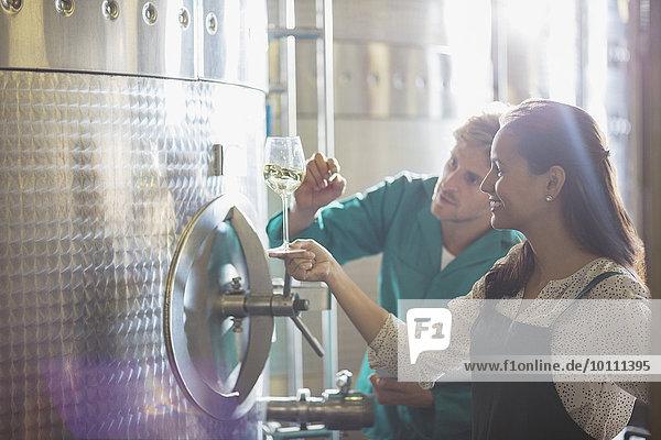 Winzer prüfen Weißwein im Edelstahlbehälter im Weinkeller