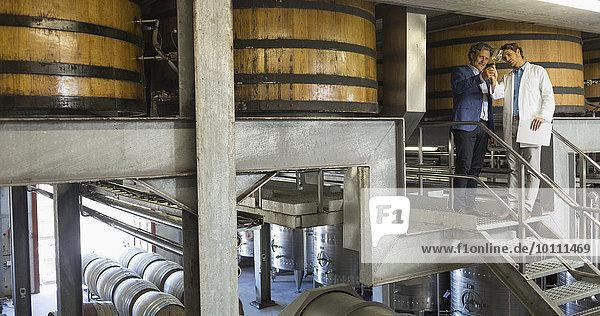 Winzer begutachten den Wein auf der Plattform im Keller