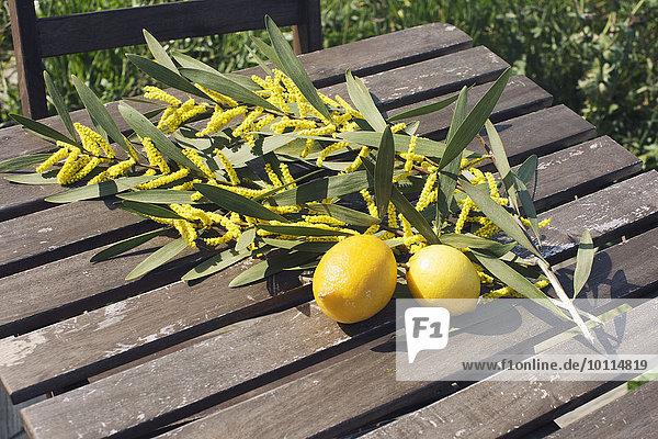 Fresh lemons and cut branches of Sydney golden wattle (Acacia longifolia)