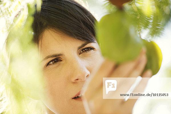Woman touching foliage