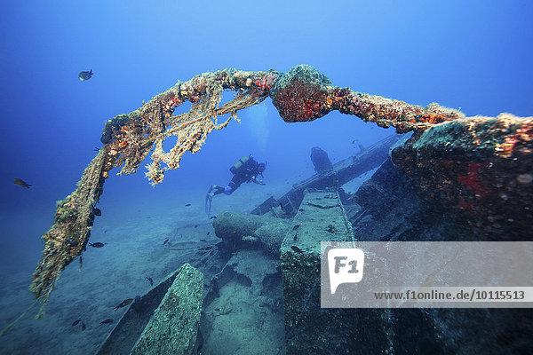 Schiffswrack Forschung Taucher Adriatisches Meer Adria