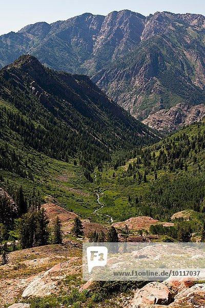 Berge  Big Cottonwood Canyon  Salt Lake City  Utah