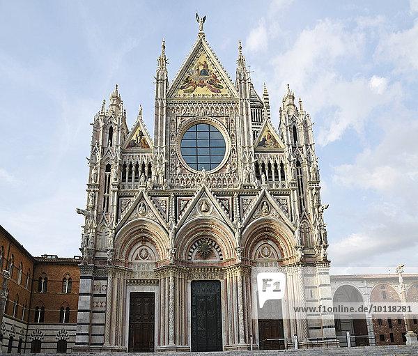 Cattedrale di Santa Maria Assunta  Dom von Siena  Siena  Toskana  Italien  Europa