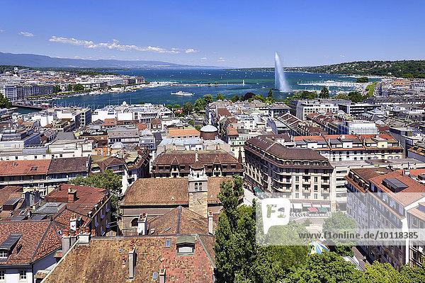 Ausblick auf die Stadt Genf mit Genfersee und Jet d'Eau  Kanton Genf  Schweiz  Europa