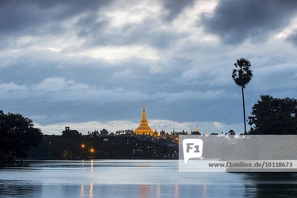 Golden main stupa at dusk  chedi  Shwedagon Pagoda  Kandawgyi Lake  Kandawgyi Nature Park  Yangon or Rangoon  Yangon Region  Myanmar  Asia