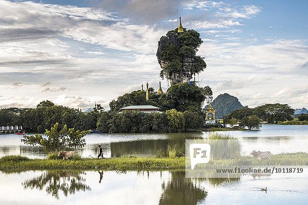 Kyauk Kalap Pagode auf einem Fels  Kloster  Junge mit Zebu oder Buckelrind spiegelt sich im See  Hpa-an  Karen Staat  Myanmar  Birma  Asien