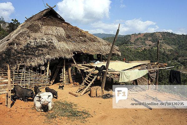 Berg Dorf Myanmar typisch Asien Volksstamm Stamm