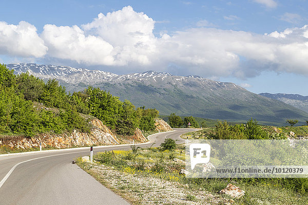 Mali i Thate Bergpanorama am Prespa Ssee  Kreis Korça  Albanien  Europa