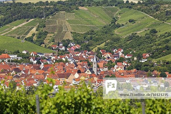 Ortsansicht  Randersacker  Mainfranken  Unterfranken  Franken  Bayern  Deutschland  Europa