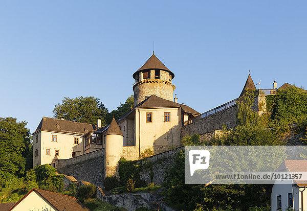 Schloss Litschau  Gemeinde Litschau  Waldviertel  Niederösterreich  Österreich  Europa